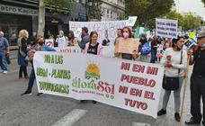 Malaga protesters take part in Madrid march against solar megaparks