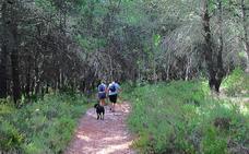 Camino de la Fuente-Llanos de Matagallar (SL-A-60)