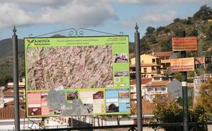 Senderismo Málaga: Almogía-Santi Petri