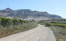 Senderismo Málaga: Pizarra-Cerralba