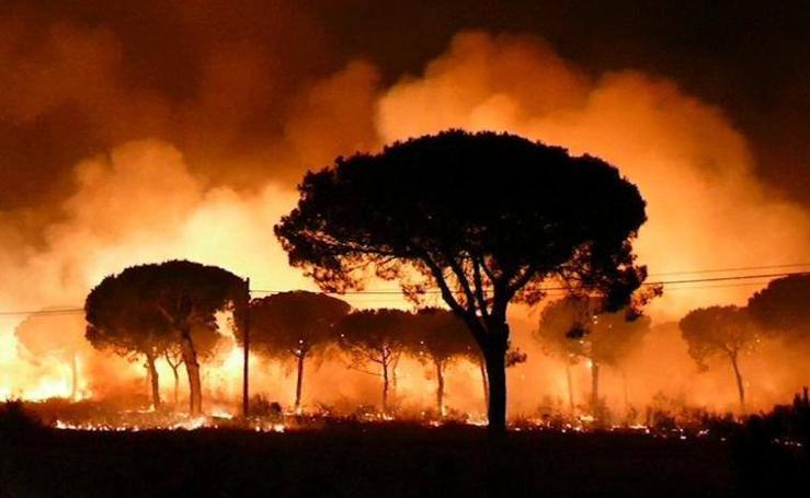 El incendio de Huelva, en imágenes