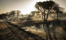 B de Bulo   El incendio de Doñana y la conspiración del gaseoducto