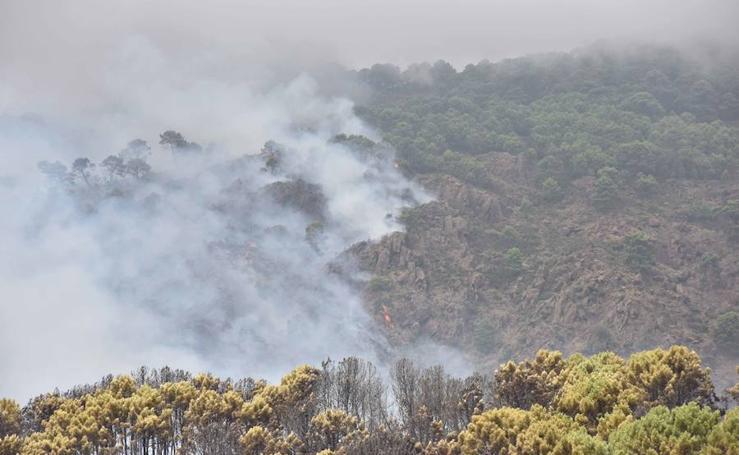 Fotos del incendio declarado en el paraje La Zagaleta, en Benahavís