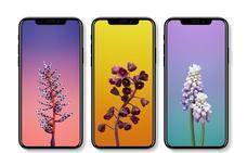 ¿Qué esperamos del nuevo iPhone?