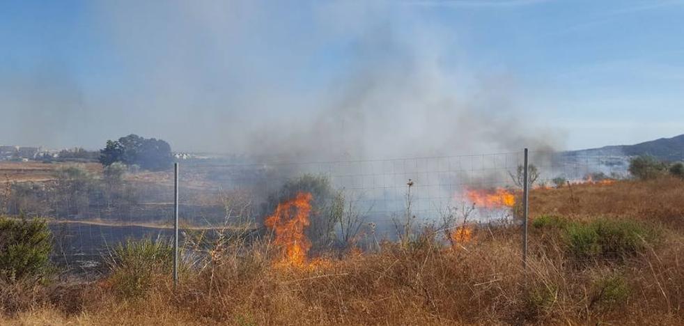 Un incendio de pastos por la zona del campus de Teatinos complica el tráfico