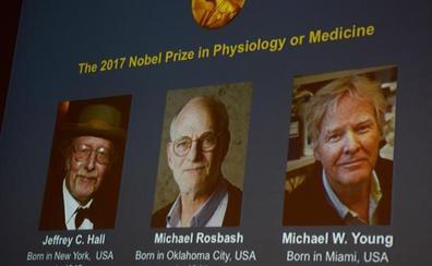 El Nobel de Medicina para los descubridores de la maquinaria del reloj biológico