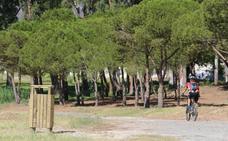 Las obras para el parque en el Benítez de Málaga afrontan otro año más de trámites