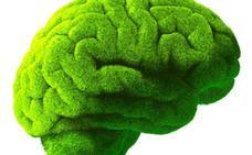 La materia gris es verde