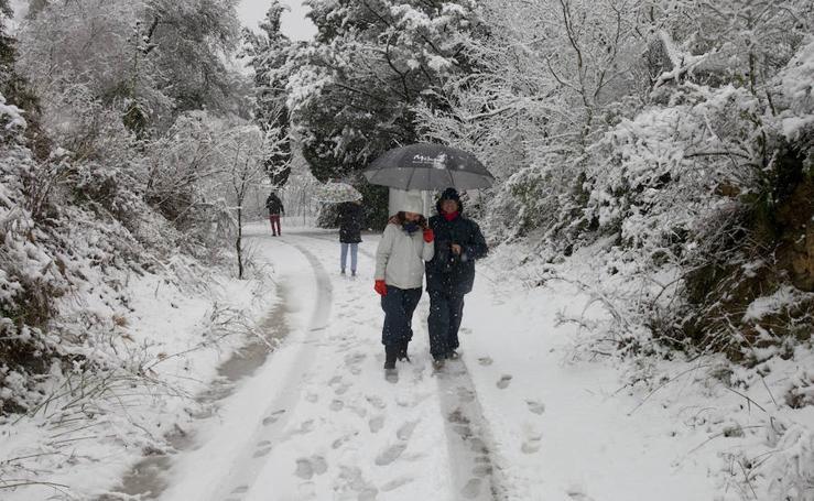 La nieve llega a los Montes de Málaga
