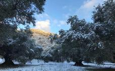 La nieve vuelve a hacer acto de presencia en Alfarnate y Alfarnatejo