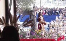 Todas las fotos del Domingo de Ramos de la Semana Santa de Málaga