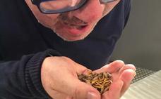Los hemos probado: ¿A qué saben los nuevos insectos comestibles de Carrefour?