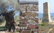 Test: ¿En qué lugar de la provincia de Málaga están estos lugares?