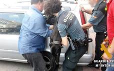 Rescatan a un perro que se asfixiaba en el maletero de un coche