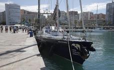 El Puerto de Málaga, base del primer censo a gran escala de ballenas y delfines del Mediterráneo
