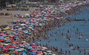 Los malagueños no temen a las medusas y toman las playas de la provincia