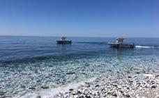 La plaga de medusas se extiende a la costa occidental y alcanza ya Torremolinos y Benalmádena