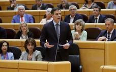 Sánchez reclama al PP que haga oposición al Gobierno, no al Estado