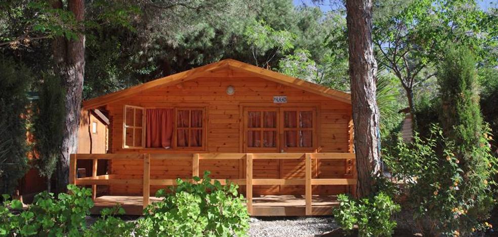 16 campings para disfrutar este verano en Málaga de una forma diferente