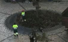 Calle La Bolsa: sustitución de árbol y avería en riego