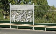La instalación de paneles en la carretera de Ojén causa la muerte de decenas de aves