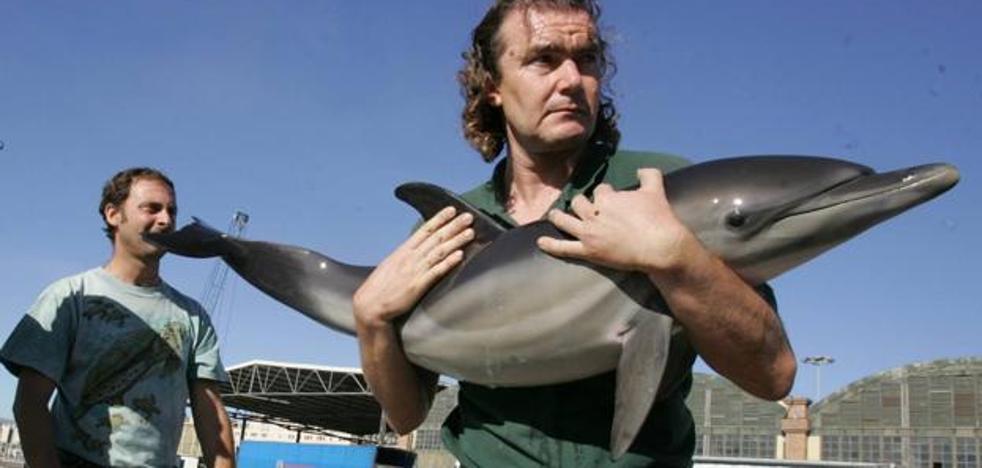Rescatan un delfín adulto varado en playas de Benalmádena
