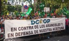 Olivareros malagueños participan en Sevilla en la protesta contra de los aranceles de Trump a la aceituna negra