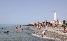 Los perros ya tienen su playa en Torrox