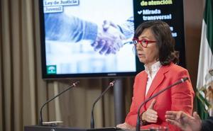 El perfil del menor infractor en los centros de Andalucía es el de un adolescente varón acusado de delitos de robo o hurto