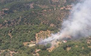 Declarado un incendio en el paraje La Pedrera en Jubrique