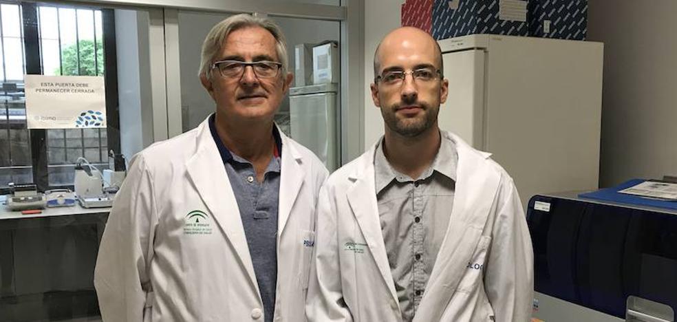 Investigadores descubren una base genética común en los trastornos mentales