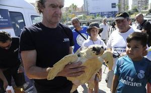 Liberan una tortuga boba recuperada por el Crema en el puerto de Málaga