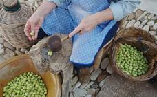 Dcoop distribuye a través de Mercadona la aceituna de mesa Aloreña