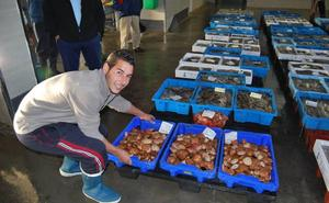 Un nuevo decreto de pesca busca reforzar la calidad y las garantías al consumidor