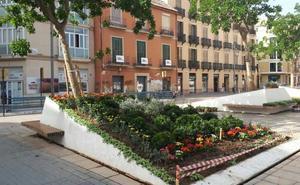 Plaza de Camas: cambio de imagen