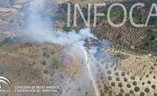 Estabilizado el incendio forestal en un paraje de Ardales