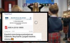 La polémica de los profesores de Español como Lengua Extranjera de la Universidad de Lleida