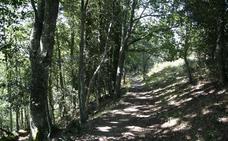 Diez rutas para disfrutar de la naturaleza