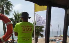 La plaga de medusas se extiende por todo el litoral de Málaga este jueves