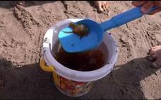 La plaga de medusas remite en el litoral malagueño