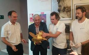 El Ayuntamiento de Málaga apoya con 40.000 euros la labor del Aula del Mar y el CREMA