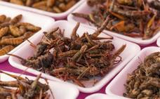 Los productores de insectos prevén llegar a las 100.000 toneladas en cinco años