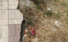 Estación de Los Prados: los vecinos piden que se reparen las aceras y se mejore la limpieza
