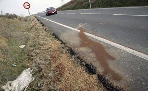 Casi una treintena de personas han muerto atropelladas en Andalucía en lo que va de año
