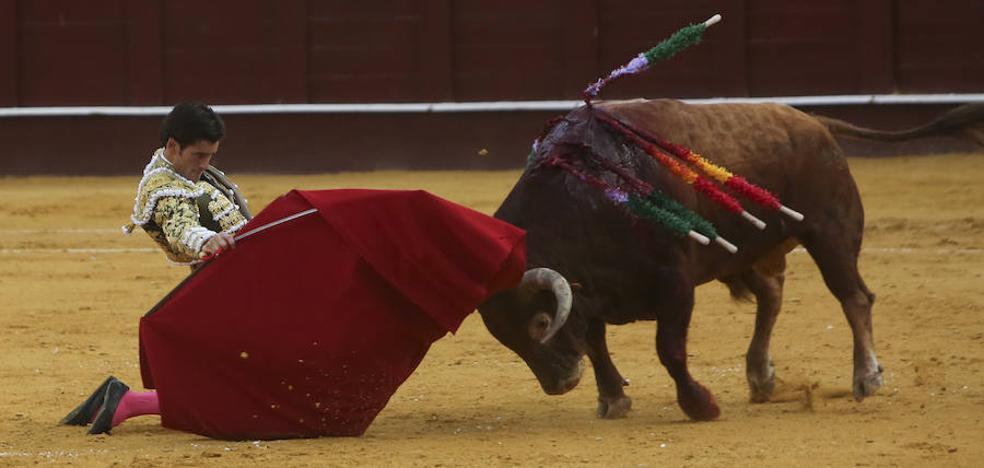 Solitaria oreja y buen toreo de capote en la primera de abono de la Feria de Málaga