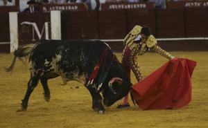 Los toros y su papel en la Feria de Málaga