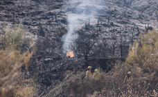 Extinguido el incendio forestal declarado en Benahavís