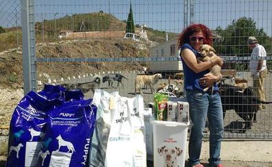 Quejas vecinales por una perrera ilegal destapan un conflicto por las lindes entre Vélez y Arenas