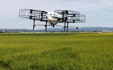 Una tecnología española permite replantar hasta 10.000 árboles en un día con drones
