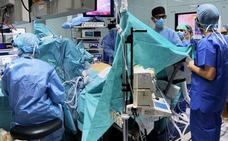 España, líder mundial en trasplantes por vigesimosexto año consecutivo